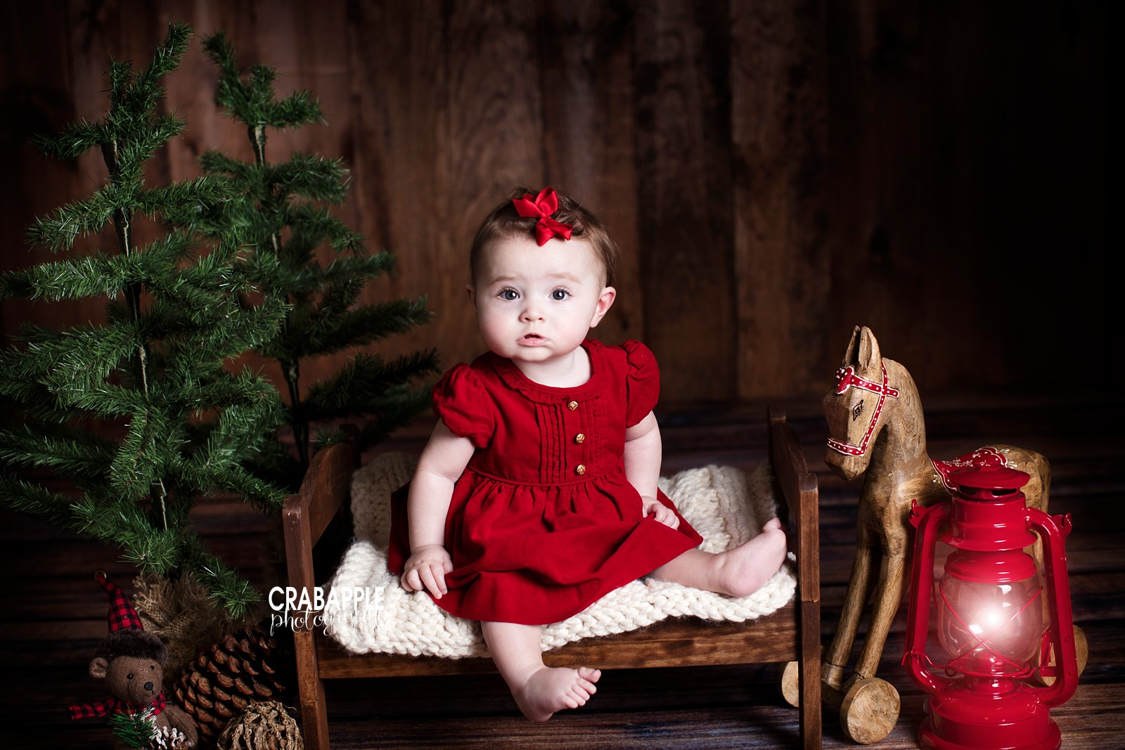 Christmas Themed Portraits Studio Sessions 183 Crabapple